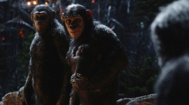 War For The Planet Of The Apes Wallpaper For Desktop