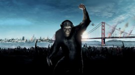 War For The Planet Of The Apes Wallpaper Gallery