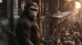 War For The Planet Of The Apes Wallpaper HD