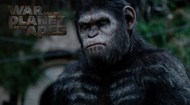 War For The Planet Of The Apes Wallpaper HQ