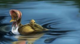 4K Duck Image