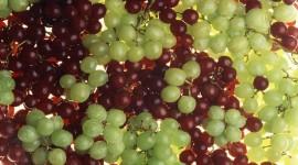 4K Grapes Wallpaper 1080p#3