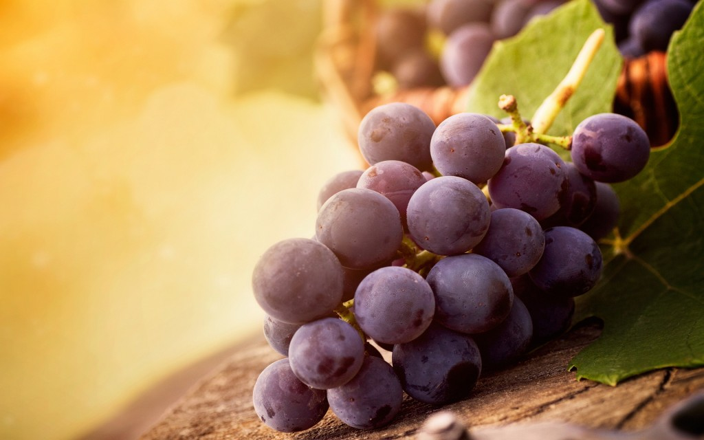4K Grapes wallpapers HD