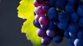 4K Grapes Wallpaper Full HD