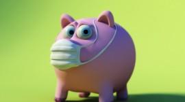 4K Piggy Image