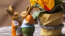 4K Rabbits Image Download