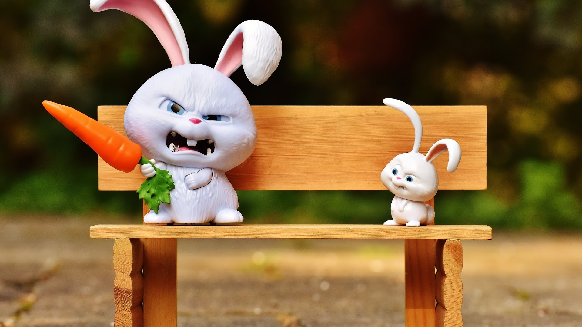 what can baby rabbits eat