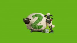 4K Sheep Image
