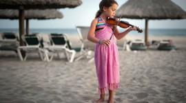 4K Violin Photo Download