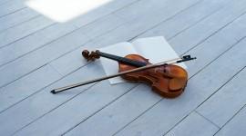 4K Violin Photo Free