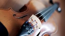 4K Violin Wallpaper