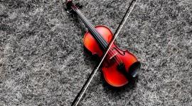 4K Violin Wallpaper Gallery