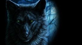 4K Wolves Image