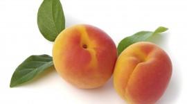 Apricots Best Wallpaper
