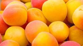 Apricots Wallpaper Full HD