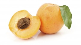 Apricots Wallpaper HD