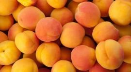 Apricots Wallpaper HQ