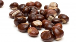Chestnuts Wallpaper Background