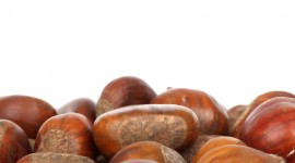 Chestnuts Wallpaper For PC