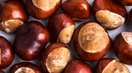 Chestnuts Wallpaper Free