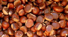 Chestnuts Wallpaper Full HD