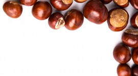 Chestnuts Wallpaper Gallery