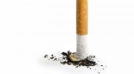 Cigarette Wallpaper Gallery