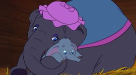 Dumbo Photo Download