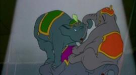 Dumbo Pics