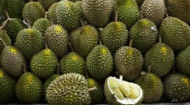 Durian High Quality Wallpaper