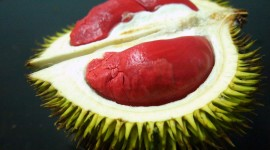 Durian Wallpaper For PC