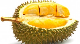 Durian Wallpaper Free