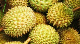 Durian Wallpaper High Definition