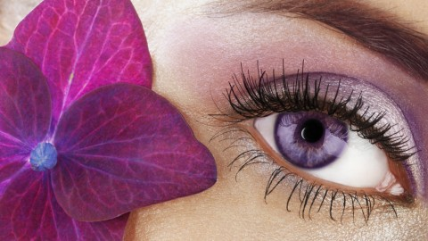 Eyelashes on the Eyes wallpapers high quality
