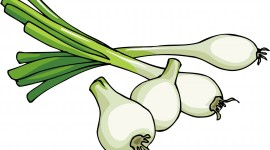 Green Onions Image