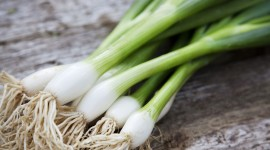 Green Onions Wallpaper For Desktop