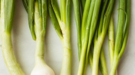 Green Onions Wallpaper For Mobile
