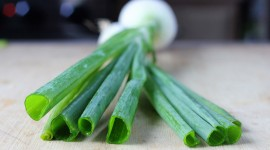Green Onions Wallpaper Gallery