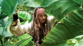 Jack Sparrow Wallpaper For PC