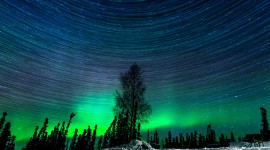 Northern Lights Best Wallpaper