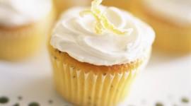 Oil Cupcakes Photo