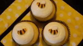 Oil Cupcakes Photo#3