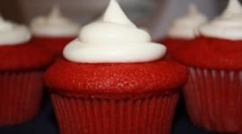 Oil Cupcakes Wallpaper Download Free