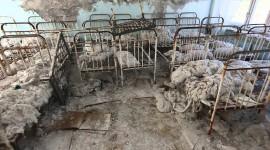 Pripyat Wallpaper Download Free