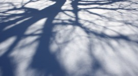 Shadows Wallpaper For Desktop
