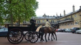 The Royal Carriage Photo#3