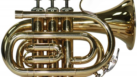 Tuba wallpapers high quality
