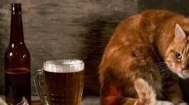 4K Beer Mugs Desktop Wallpaper HD
