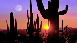 Arizona Wallpaper Download Free