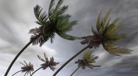 Hurricane Wallpaper Gallery